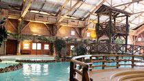 Disney's Davy Crockett Ranch® inkl. entrébilletter - familiehotel med gode børnerabatter.