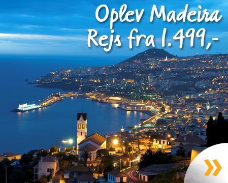 Oplev Madeira