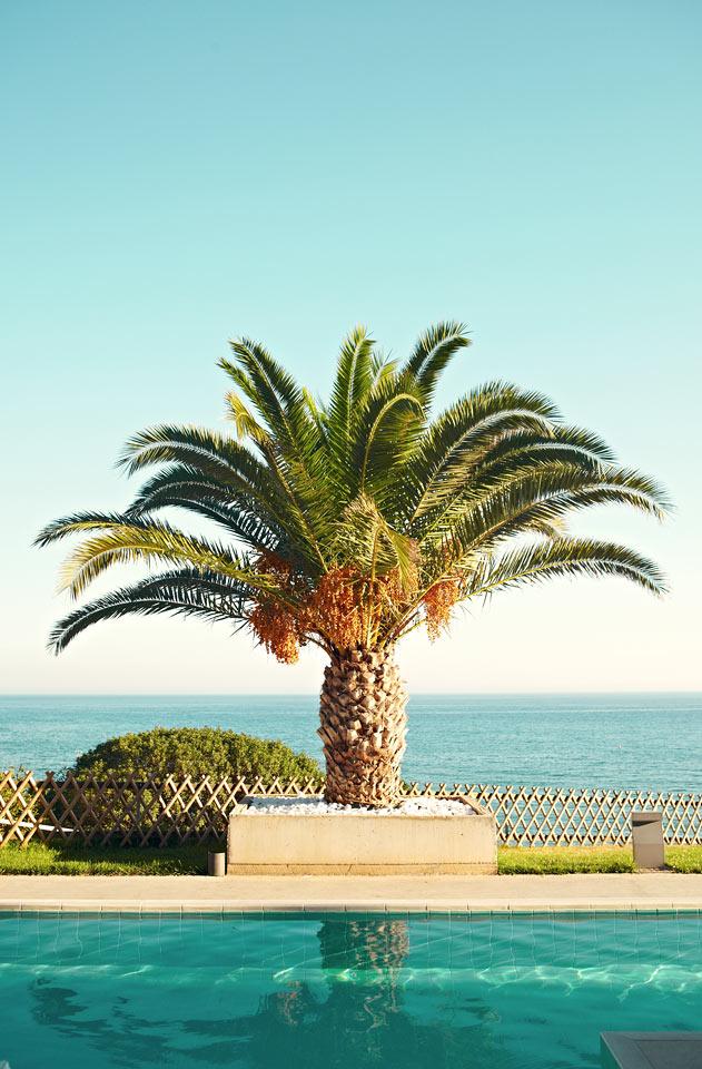 Fra hotellets pools har du smuk udsigt over havet