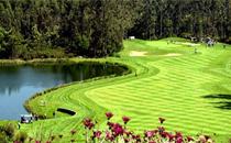 Golf på Madeira