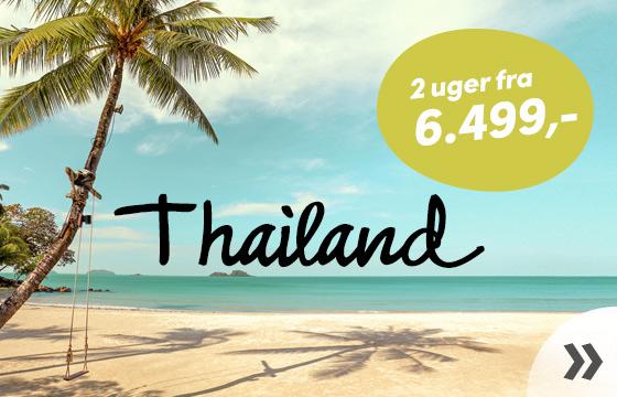 Thailand til vinter