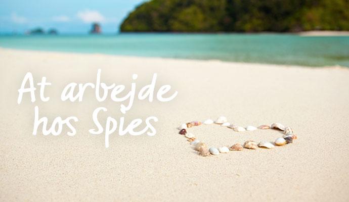 Rørig Sådan arbejder vi hos Spies | Spies Rejser ZS-15